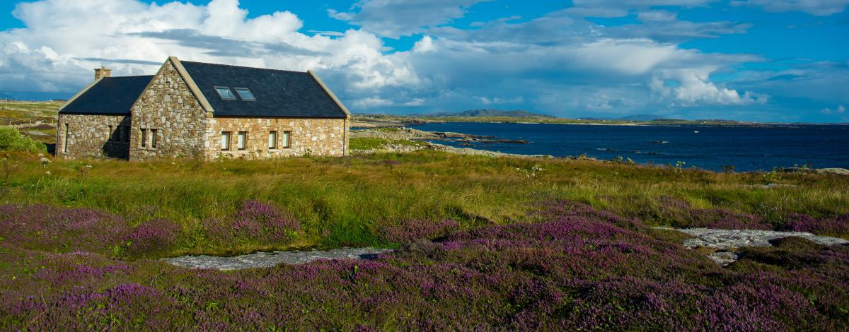 Cottage au coeur de l'Irlande