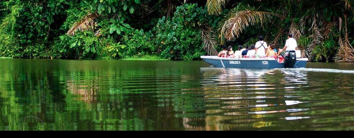 Circuit en petit groupe au Costa Rica, les grands incontournables