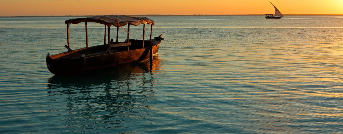 Escapade safari en Tanzanie et plages de Zanzibar