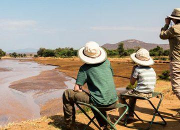 Le Kenya en famille : Safari et plages au Royaume de Simba