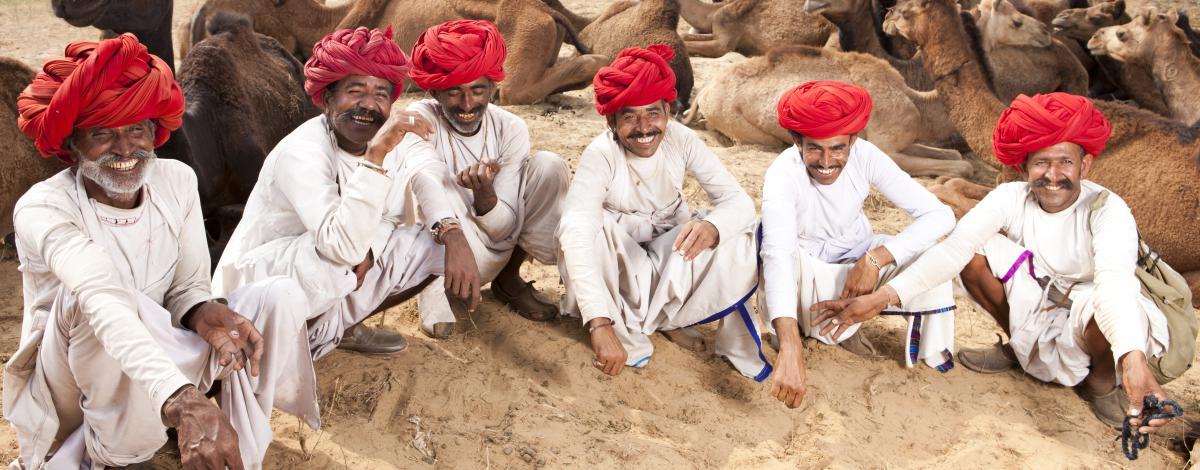 Circuit exclusif en petit groupe : couleurs du Rajasthan pendant la foire de Pushkar