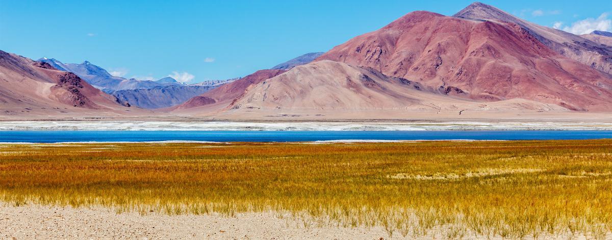 Les charmes du Ladakh