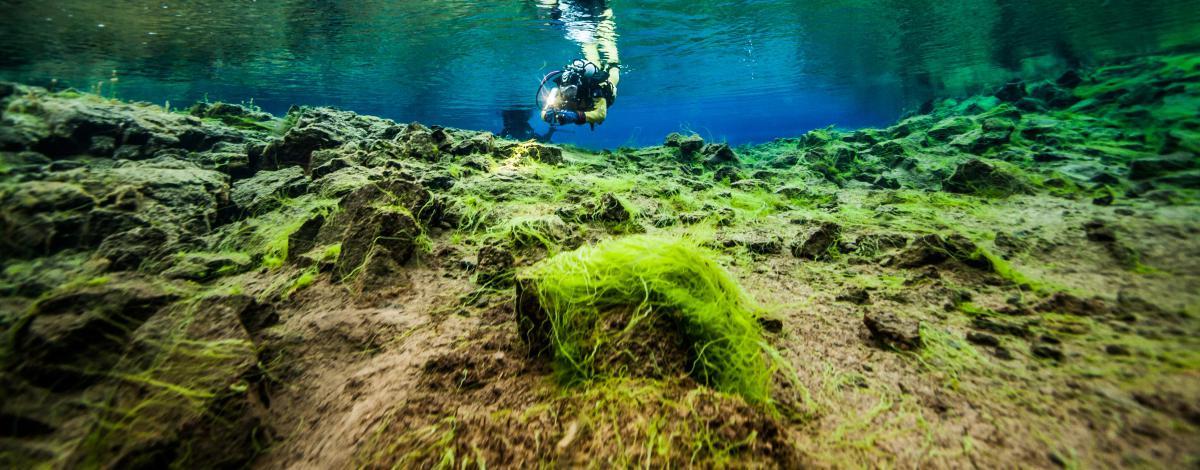 Séjour aventure, l'Islande nature