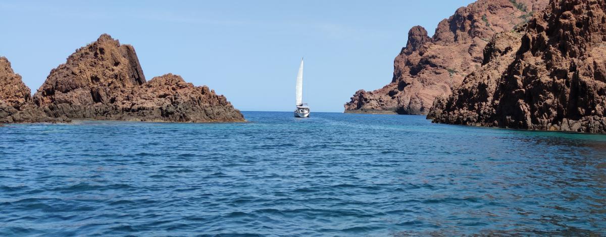 Le Golfe de Porto et Calvi en catamaran