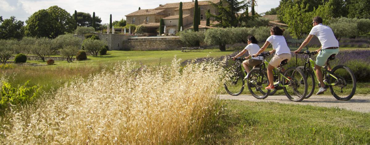 Route du vélo en Provence