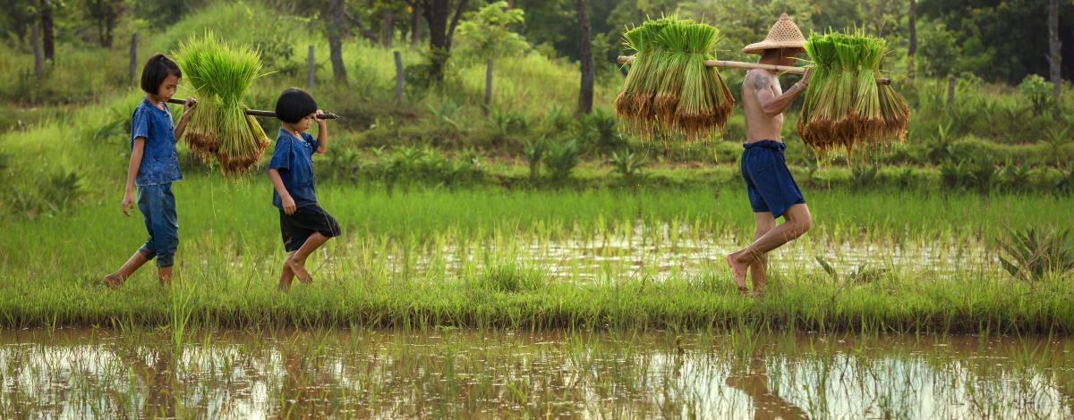 La Thaïlande hors des sentiers battus en petit groupe