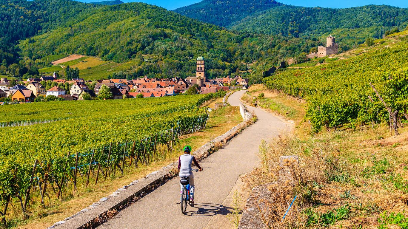 Immersion sur la Route des Vins d'Alsace