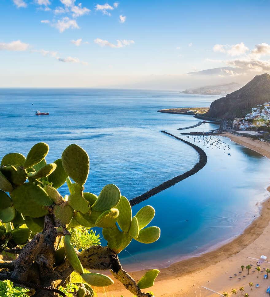 Pourquoi voyager avec Cercle des Voyages à Tenerife ?
