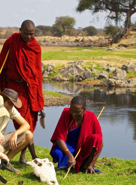 Selous, Ruaha et Sud Tanzanie